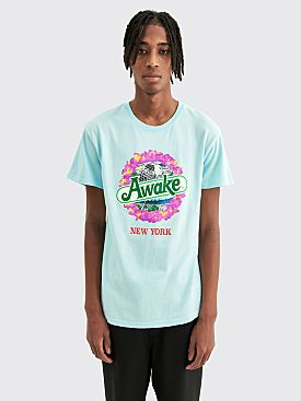 Awake NY Strawberry Kiwi T-shirt Glacier