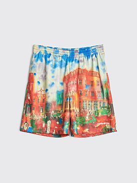 Fucking Awesome Summer Park Printed Mesh Shorts Multi Color