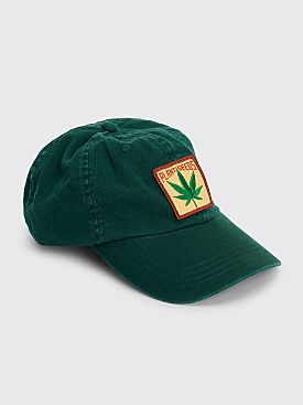 IDEA Plant Seeds Hat Green