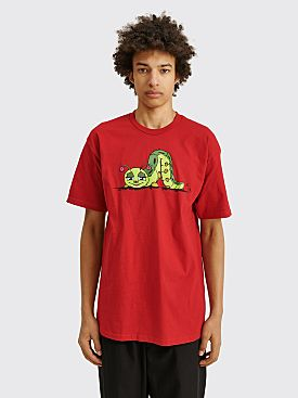 Iggy Caterpillar T-shirt Red