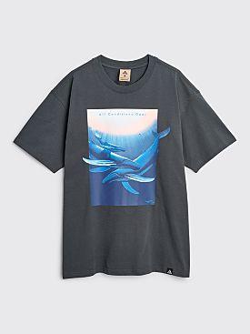 Nike ACG Wyland T-shirt Dark Smoke Grey